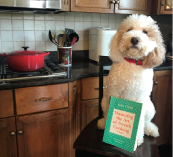 Nikki's dog masters French cooking
